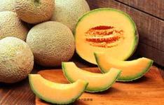 白癜风患者夏天可以吃哈密瓜吗?